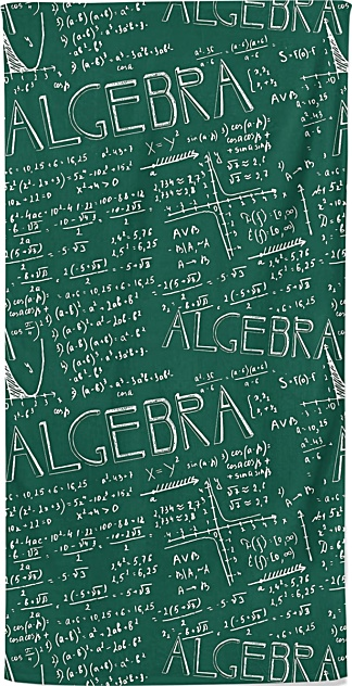 Algebra Math Beach Towel
