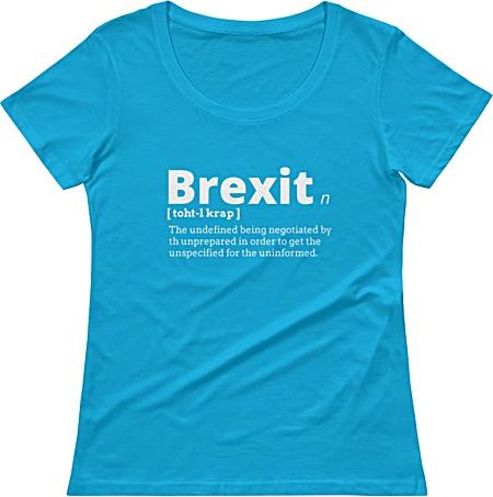 Rude Brexit T-shirt tshirt tee government political women girl girls