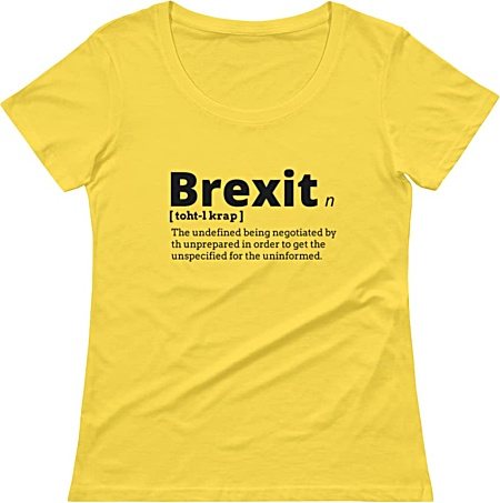 Rude Brexit T-shirt tshirt tee government political women girl girls
