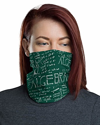 Chalkboard Algebra Math Face Mask Neck Gaiter